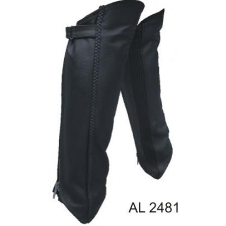 AL2481